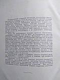 Заразные болезни человека. Академический справочник , фото 3