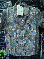 Рубашка детская мальчик r53282626