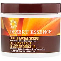 Desert Essence, Нежный стимулирующий скраб для лица , 4 жидких унции (120 мл)