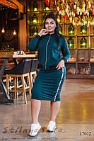 Трикотажный большой костюм юбкой бутылка, фото 1