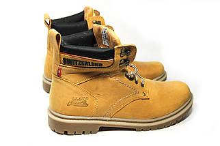 Зимние ботинки (на меху) мужские Switzerland (реплика) 13032 ⏩ [ 41,42,43,43,45,45 ], фото 2