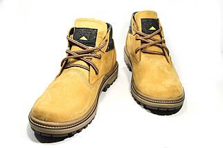 Зимние ботинки (на меху) мужские CAT (реплика) 13041 ⏩ [ 41,41,42,42,43,43,45 ], фото 3