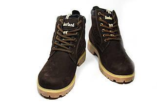 Зимние ботинки (на меху) женские Timberland (реплика) 13046 ⏩ [ 36,36,37,38,39 ], фото 2