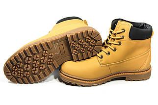 Зимние ботинки (на меху) женские Timberland  11-042 ⏩ [ 37,38,38,41 ], фото 2