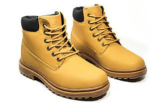 Зимние ботинки (на меху) женские Timberland  11-042 ⏩ [ 37,38,38,41 ], фото 3