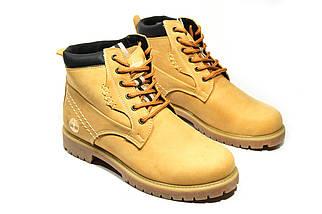 Зимние ботинки  (на меху) женские Timberland (реплика) 13047 ⏩ [ 36,36,37,37,38,38,39,39 ], фото 2