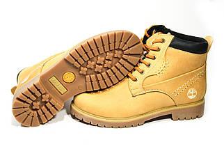 Зимние ботинки  (на меху) женские Timberland (реплика) 13047 ⏩ [ 36,36,37,37,38,38,39,39 ], фото 3