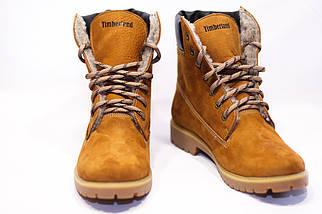 Зимние ботинки  (на меху) женские Timberland  13052 ⏩ [ 39,40 ], фото 2