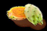 Свежий Плод кактуса (Фрукт)