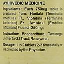 Трифала (Triphala Tablets DS, SDM), 100 таблеток по 750 мг - Аюрведа высшее качество премиум, фото 6
