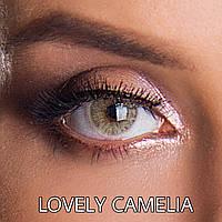 Цветные линзы ЛЮКС качество с диоптриями  Rainbow Lovely Camelia Турция
