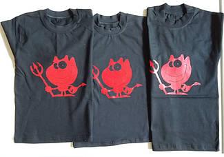 Комплект детский футболка +  шорты  3