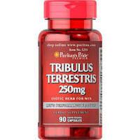Повышающий тестостерон Puritan's Pride Tribulus Terrestris 90 Capsules
