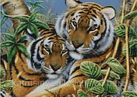 """Набор для вышивания """"Тигриная нежность"""""""