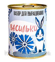 """Консерва-рослина """"Волошки"""""""