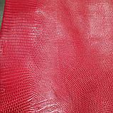 Шкіра ігуани червона, фото 2