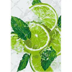 """Картина по номерам """"Лаймовый фреш"""" (фрукты, мята, цитрусовые, свежесть) 5544"""
