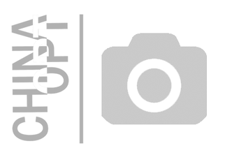 Решетка радиатора, без эмблемы, BYD F3 [1.6, до 2010г.], BYDF3-8401111, FPS