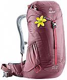 Рюкзак жіночий Deuter AC Lite 22 SL, фото 6