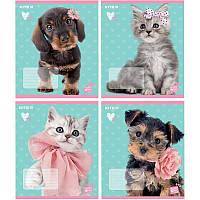 Тетрадь 12 листов косая Kite Studio Pets SP19-235
