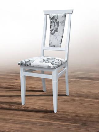 Стул кухонный обеденный Микс мебель Чумак Белый, фото 2