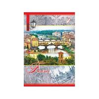 Деловая книга,144листа (клетка) Перышко А-5 Бриск ДКВ-11-Пёрышко-0207