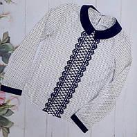 Детская школьная блуза  в горошек на девочку р. 128-152