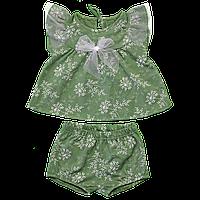 Комплект для девочки с шортиками с бантиком, Размер детской одежды 80