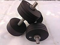 Гантелі металеві 2 шт по 22 кг, фото 1