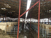 Строительство,ремонт и реконструкция ферм КРС,свиноферм.пром строений б