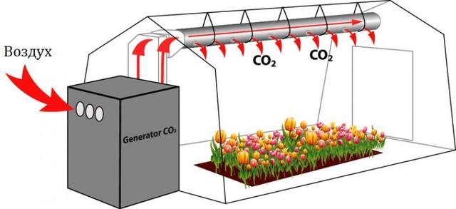 Углекислый газ в теплице циркуляция воздуха
