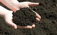 От чего зависит плодородие почвы на дачном участке