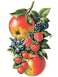 Картина по номерам Фрукты-ягоды (AS0594) 30 х 40 см ArtStory (Без коробки)