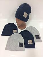 Детские тонкие демисезонные трикотажные шапки для мальчиков оптом, р.46-48 50-52, Польша (Ala Baby), фото 1