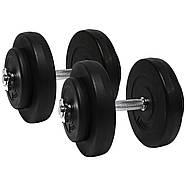 Гантелі розбірні 2х10 кг ORIGINAL-SPORT (Металевий Гриф), фото 2