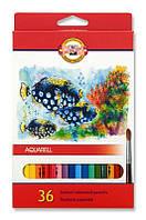 """Цветные акварельные карандаши KOH-I-NOOR  """"Рыбки"""" 36цв"""