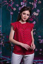 Блуза горошек с рюшами, фото 2
