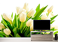 Глянцевые фотообои тюльпаны белые разные текстуры , индивидуальный размер