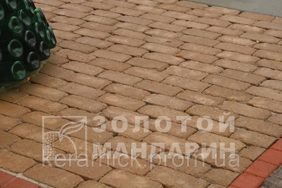 Тортуарная плитка Золотой мандарин Кирпич Антик 200*100(6см)