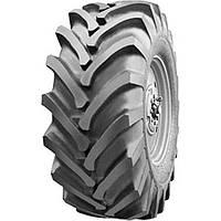 Грузовые шины Белшина ИЯВ-79 (с/х) 21.3 R24 140A6 10PR