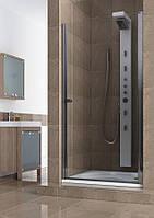 Душевые двери Aquaform Silva правые 100 см 103-05559, фото 1