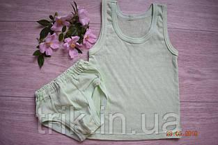 Комплект нижнего белья для мальчика оливковый мультирип, фото 3
