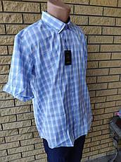 Рубашка мужская летняя коттоновая брендовая высокого качества ALPACHINOI, Турция, фото 2