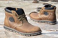 Зимние мужские ботинки на замке и шнурках, натуральная кожа, мех коричневые (Код: Р912а)