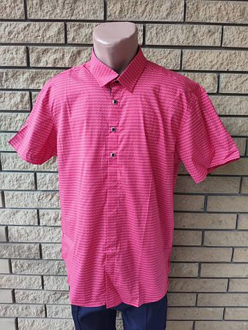 Рубашка мужская летняя коттоновая стрейчевая брендовая высокого качества WHITE MOUNTAIN, Турция, фото 2