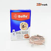 Bolfo Bayer — Больфо ошейник для кошек и собак 66см