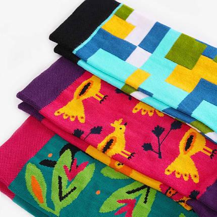 Носки Dodo Socks набор Artista 36-38, 3 шт, фото 2