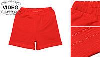Шорти дитячі трикотажні червоні бавовна / шорты детские трикотажные красные хлопок