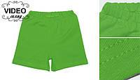 Шорти дитячі трикотажні зелені бавовна / шорты детские трикотажные зеленые хлопок