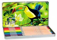 Карандаши цветные в металлической упаковке, серия Artist, 12 цветов, Colorino (83256PTR)